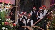 Christmas Cruise Ventura 2016 (19)